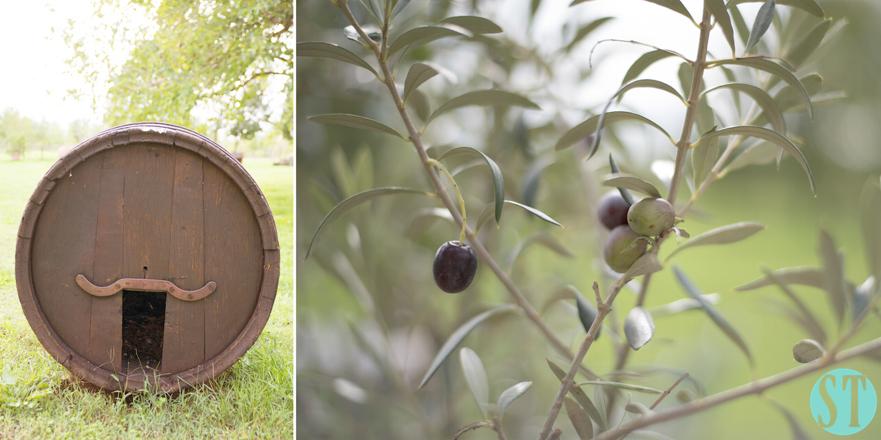 01 Rustic Style Wedding in Tuscany