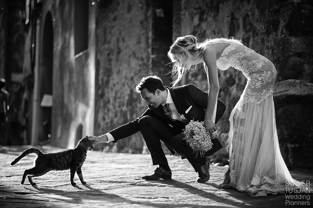 Pet Friendly Weddings